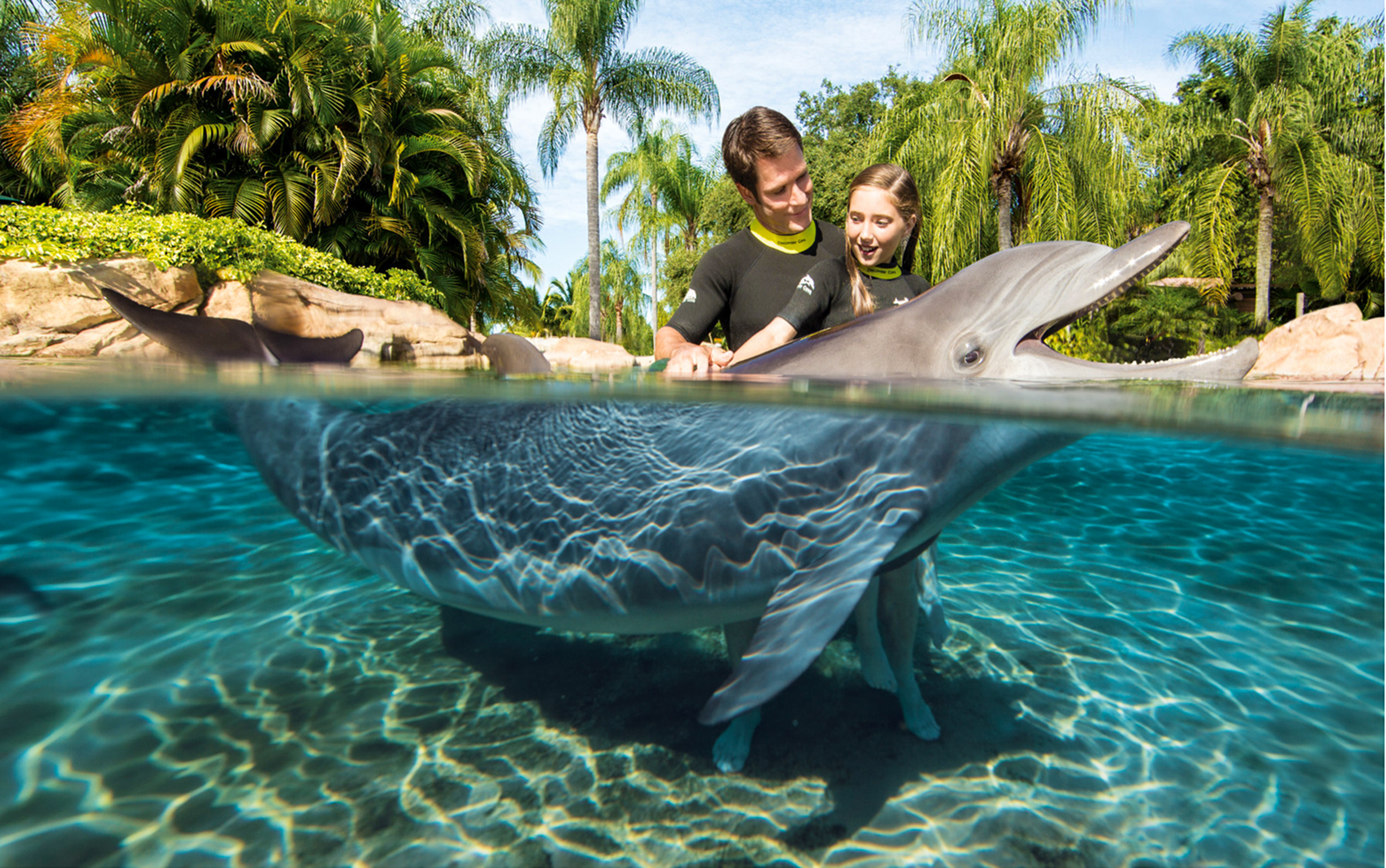 DCO_15_Dolphin2DadDaughter_4H8A3990